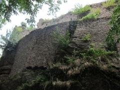 Ruines du château de Rathsamhausen - English: the castle's western side