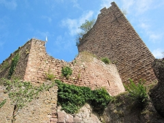 Ruines du château de Rathsamhausen - English: the castle's southwestern corner seen from out of the circular ditch