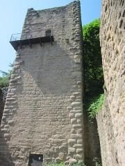 Ruines du château de Hagueneck - English: the keep's northeastern side, seen from inside the castle