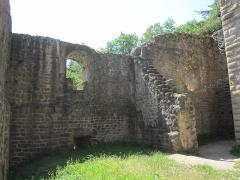 Ruines du château de Hagueneck - English: southeastern wall of the palas