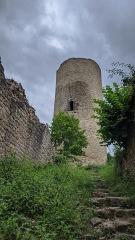 Ruines du château de Pflixbourg - Deutsch:   Das Château du Pflixbourg bei Turkheim im Elsass, Frankreich
