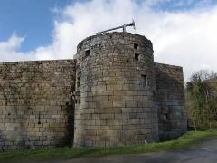 Ruines du château de Tonquédec - Le château de Tonquédec est situé sur la commune du même nom, en Bretagne. C'est un des monuments les plus visités du département des Côtes-d'Armor.