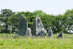 Alignement et dolmen de Kermario - Alignement de Kermario. (Carnac, Morbihan, Bretagne, France)