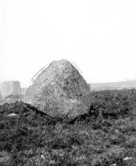 Alignement et dolmen de Kermario -