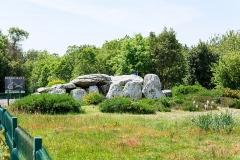 Alignement et dolmen de Kermario - Dolmen de Kermario. (Carnac, Morbihan, Bretagne, France)