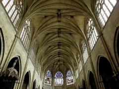 Ancienne cathédrale, actuellement église Saint-Pierre - Voûtes de la cathédrale Saint-Pierre de Condom (32).