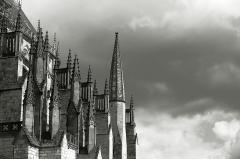 Cathédrale Saint-Etienne - détail, noir et blanc