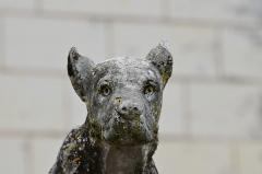 Château et son enceinte - Français:   Tête de chien sur une balustrade du château de Loches.