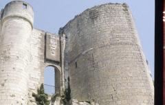 Château et son enceinte - This building is en partie classé, en partie inscrit au titre des monuments historiques de la France. It is indexed in the base Mérimée, a database of architectural heritage maintained by the French Ministry of Culture,under the reference PA00097821 .