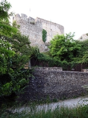 Site castral de Montbazon - Français:   Donjon de Montbazon vu d\'en bas.