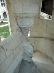 Cloître Saint-Gatien dit La Psalette - Cloître de la Psalette (XVe et XVIe siècles). Escalier, dans l'angle nord-est. Partie supérieure.