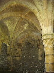 Château - Château de Meung-sur-Loire (Loiret, France), cellier gothique