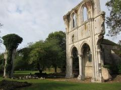 Ruines de l'abbaye de Fontainejean (ou Fontaine-Jean) -  Ruin of Abbey de Fontainejean, Saint-Maurice-sur-Aveyron