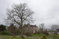 Château de Cosnac - Français:   Château de Cosnac