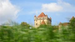Château du Pin - This building is en partie classé, en partie inscrit au titre des monuments historiques de la France. It is indexed in the base Mérimée, a database of architectural heritage maintained by the French Ministry of Culture,under the reference PA00101991 .