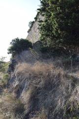 Ruines du château - Château de Coustaussa