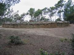 Monument mégalithique, dit Allée couverte de Saint-Eugène, sur le domaine de Russol - Français:   Dolmen à couloir de Saint-Eugène à Laure-Minervois (Aude)