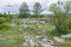 Site archéologique du dolmen 3 de Saint-Martin-du-Larzac - Polish Wikimedian and photographer Free-license photographer