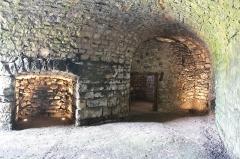 Ancienne usine de chaux - Français:   les quatre fours sont reliées par une halle voûtée en berceau plein cintre