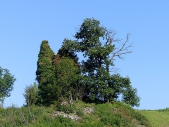 Site archéologique de Chignin - English: Sight, in the morning, of Tour Corraz ruined tower of Chignin, Savoie, France.