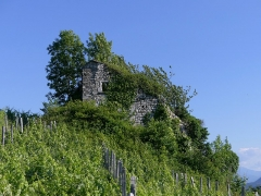 Site archéologique de Chignin - English: Sight, in the evening, of Tour de Bourdeau ruined tower of Chignin, Savoie, France.