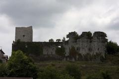 Château de Guiche -   Dukes of Gramont's Castle, ruins at the western end of the village.