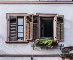 Maison - English:   Windows of the building at 7 Grand\'Rue in Ribeauvillé, Haut-Rhin, France