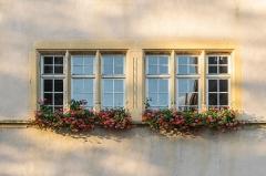 Ancien hôtel de ville - English:   Windows of the former town hall of Rouffach, Haut-Rhin, France