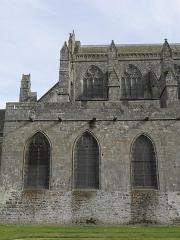 Ancienne cathédrale Saint-Samson -  Flanc nord du chœur de la cathédrale Saint-Samson de Dol-de-Bretagne (35).