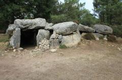 Trois dolmens à galerie de Mané-Bras - Français:   Dolmen de Lann-Mané-Bras: vue du groupe central