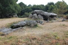 Trois dolmens à galerie de Mané-Bras - Français:   Dolmen de Lann-Mané-Bras: vue du groupe nord