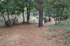 Trois dolmens à galerie de Mané-Bras - Français:   Dolmen de Lann-Mané-Bras: vue générale du groupe sud