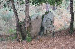 Trois dolmens à galerie de Mané-Bras - Français:   Dolmen de Lann-Mané-Bras: détail groupe sud