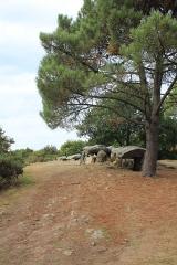 Trois dolmens à galerie de Mané-Bras - Français:   Dolmen de Lann-Mané-Bras: vue générale du groupe central
