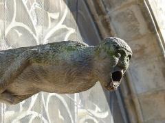 Eglise Notre-Dame-du-Roncier - Français:   Gargouille de la basilique Notre Dame du Roncier à Josselin