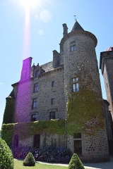 Château fort de Pesteils -  Château de Pesteils (Polminhac)