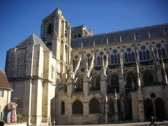Cathédrale Saint-Etienne -  Flanc sud de la cathédrale Saint-Étienne de Bourges (Cher, France)