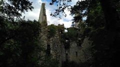 Restes du château de Bois-Sire-Amé - Français:   Château de Bois-Sire-Amé.