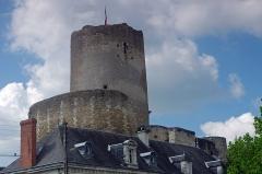 Ensemble castral - Châtillon-sur-Indre (Indre)  Le château et la Tour de césar.  La Tour de César est le donjon d\'un ancien château médiéval.  Ce genre de tour était un élément majeur de l\'architecture militaire médiévale. On n\'est ici pas très loin des limites de l\'empire angevin, d\'où la nécessité de surveiller les frontières.  Le donjon de Châtillon-sur-Indre est l\'un des derniers vestiges d\'un puissant château fort édifié sur ordre d\'Henri II Plantagenêt vers 1160. Le château était en effet à la limite des domaines du roi de France et du roi d\'Angleterre.  A la fin du XIIème siècle-début XIIIème, sous Philippe Auguste, le château entre dans le domaine du roi de France  En avril 1205, Philippe Auguste cédera le château, à titre provisoire, à Dreu de Mello, fils du connétable* de France Dreu III (ou IV) de Mello*.  A la mort, sans postérité, de Dreu de Mello, en 1249, les héritiers contesteront le retour du domaine dans le domaine royale. Après marchandage, le neveu de Dreu de Mello recevra 600 livres de rente pour renoncer à Châtillon et Loches. Ces 600 livres seront inscrites sur la recette des prévôtés et baillages*.  En septembre 1274, le roi Philippe III (Philippe le Hardi) donne le château à son Grand Chambellan*, Pierre de La Brosse*. Pierre de la Brosse qui ne possédera le château que jusqu\'en 1278, pour cause de pendaison suite à une présumée trahison au profit d\'Alphonse de Castille.  Pendant les XIIIème et XIVème siècles, le château  ne voit que le séjour temporaire et occasionnel du roi. Philippe III y séjournera du 26 a 30 novembre 1283; Philippe IV en mai 1289, août 1305 et février 1307; Jean II à l\'hiver 1346.  Le château fait partie du duché de Touraine quand Louis d\'Amboise en fait une prison en 1432.  La château quittera et retrouvera le domaine royal à plusieurs reprises. Au moment de la Révolution, la terre de Châtillon est dans la famille Amelot.  Tel qu\'il se présente avec sa tour cylindrique qui culmine à 30 mètres, entourée d\