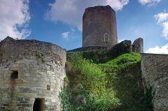Tour de César - Châtillon-sur-Indre (Indre)  La motte, la Tour de César (donjon) avec sa porte d'origine et les restes de la porte d'en bas de l'enceinte  La Tour de César est le donjon d'un ancien château médiéval.  Ce genre de tour était un élément majeur de l'architecture militaire médiévale. On n'est ici pas très loin des limites de l'empire angevin, d'où la nécessité de surveiller les frontières.  Le donjon de Châtillon-sur-Indre est l'un des derniers vestiges d'un puissant château fort édifié sur ordre d'Henri II Plantagenêt vers 1160. Le château était en effet à la limite des domaines du roi de France et du roi d'Angleterre.  A la fin du XIIème siècle-début XIIIème, sous Philippe Auguste, le château entre dans le domaine du roi de France  En avril 1205, Philippe Auguste cédera le château, à titre provisoire, à Dreu de Mello, fils du connétable* de France Dreu III (ou IV) de Mello*.  A la mort, sans postérité, de Dreu de Mello, en 1249, les héritiers contesteront le retour du domaine dans le domaine royale. Après marchandage, le neveu de Dreu de Mello recevra 600 livres de rente pour renoncer à Châtillon et Loches. Ces 600 livres seront inscrites sur la recette des prévôtés et baillages*.  En septembre 1274, le roi Philippe III (Philippe le Hardi) donne le château à son Grand Chambellan*, Pierre de La Brosse*. Pierre de la Brosse qui ne possédera le château que jusqu'en 1278, pour cause de pendaison suite à une présumée trahison au profit d'Alphonse de Castille.  Pendant les XIIIème et XIVème siècles, le château  ne voit que le séjour temporaire et occasionnel du roi. Philippe III y séjournera du 26 a 30 novembre 1283; Philippe IV en mai 1289, août 1305 et février 1307; Jean II à l'hiver 1346.  Le château fait partie du duché de Touraine quand Louis d'Amboise en fait une prison en 1432.  La château quittera et retrouvera le domaine royal à plusieurs reprises. Au moment de la Révolution, la terre de Châtillon est dans la famille Amelot.  Tel qu'il se présente a