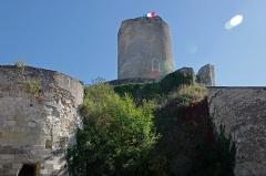 Tour de César - Châtillon-sur-Indre (Indre).  La Tour César* ou Grosse Tour.  Le donjon sur motte* domine Châtillon.   On peut nommer donjon l'ensemble de la grosse tour avec sa chemise*.  La forme cylindrique de la