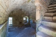 Restes du château de Merle -  Tours de Merle, Saint-Geniez-ô-Merle