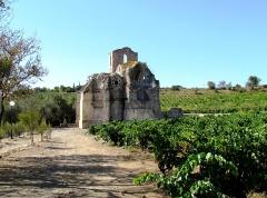 Ruines de l'ancienne église Notre-Dame-des-Oubiels - Français:   La chapelle de Notre-Dame-des-Oubiels, dans les vignes des Corbières