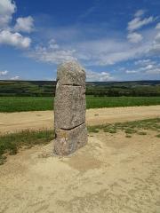 Menhirs constituant le premier groupe dit de la Fage - Français:   Les Bondons est un village de Lozère.  Cham signifie Causse, c\'est à dire un plateau calcaire. Aujourd\'hui, il reste 154 menhirs. Beaucoup ont été sciés pour servir de pierre de construction  résistant au temps. (granit) Les archéologues n\'arrivent pas à donner un sens à la disposition, l\'emplacement des menhirs.  Cependant, ils les ont classifiés en huit groupes. Ceux-ci appartiennent au groupe de la Fage N° 2, dit groupe de la Pierre des Trois Paroisses. C\'est le menhir représenté sur cette photo.