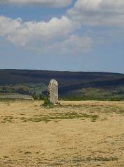Menhirs constituant le premier groupe dit de la Fage - Français:   Les Bondons est un village de Lozère.  Cham signifie Causse, c\'est à dire un plateau calcaire. Aujourd\'hui, il reste 154 menhirs. Beaucoup ont été sciés pour servir de pierre de construction  résistant au temps. (granit) Les archéologues n\'arrivent pas à donner un sens à la disposition, l\'emplacement des menhirs.  Cependant, ils les ont classifiés en huit groupes. Ceux-ci appartiennent au groupe de la Fage N° 2, dit groupe de la Pierre des Trois Paroisses.