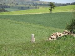 Trois menhirs, du deuxième groupe dit de la Fage, à 500 m du premier du même nom - Français:   Les Bondons est un village de Lozère.  Cham signifie Causse, c\'est à dire un plateau calcaire. Aujourd\'hui, il reste 154 menhirs. Beaucoup ont été sciés pour servir de pierre de construction  résistant au temps. (granit) Les archéologues n\'arrivent pas à donner un sens à la disposition, l\'emplacement des menhirs.  Cependant, ils les ont classifiés en huit groupes. Ceux-ci appartiennent au groupe de la Fage N° 2, dit groupe de la Pierre des Trois Paroisses.
