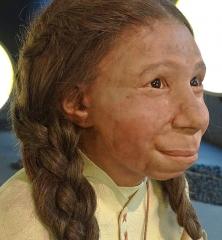 Gisement paléolithique dénommé Gisement de la Quina - Deutsch:  Rekonstruktion eines Neandertaler-Mädchens (Schädelfund La Quina 18) nach Originalfunden, ausgestellt im Neanderthal Museum, Erkrath/Mettmann