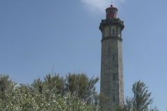 Vieux Phare des Baleines et phare des Baleineaux -  _DSC0068.JPG