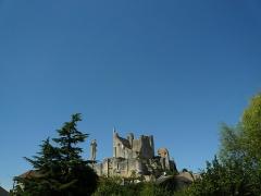 Château baronial ou des Evêques de Poitiers - Français:   Le Château des évêques de Poitiers se situe tout à gauche de cette photo