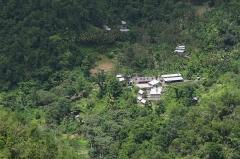 Habitation caféière La Grivelière - Français:   Guadeloupe - Vue globale du Domaine de l\'Habitation La Grivelière - Plantation de Café sur la commune de Vieux-Habitants.